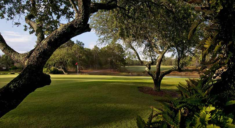 Golf is one of the favorite outdoor activities in Wilmington NC