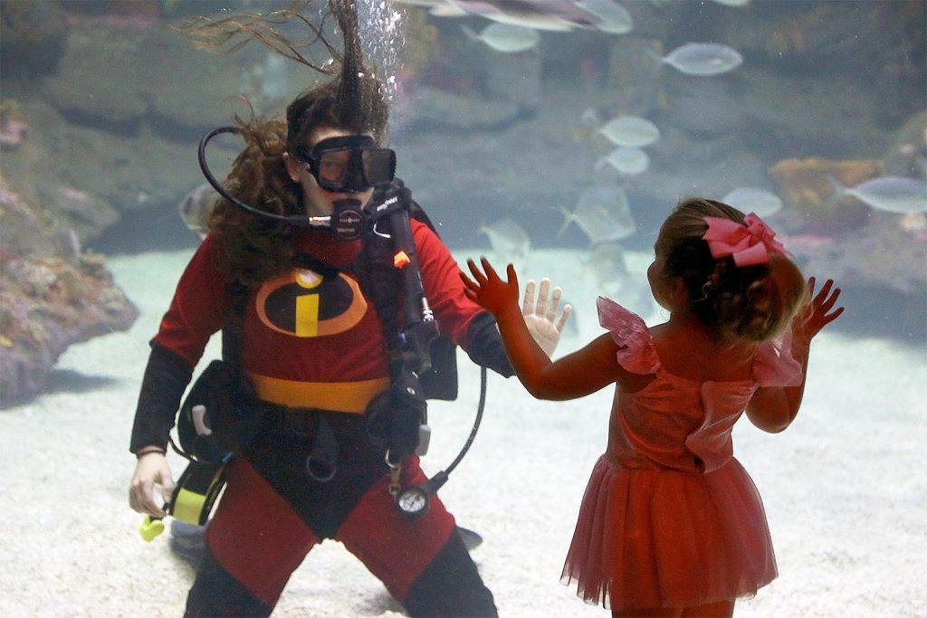nc aquarium halloween