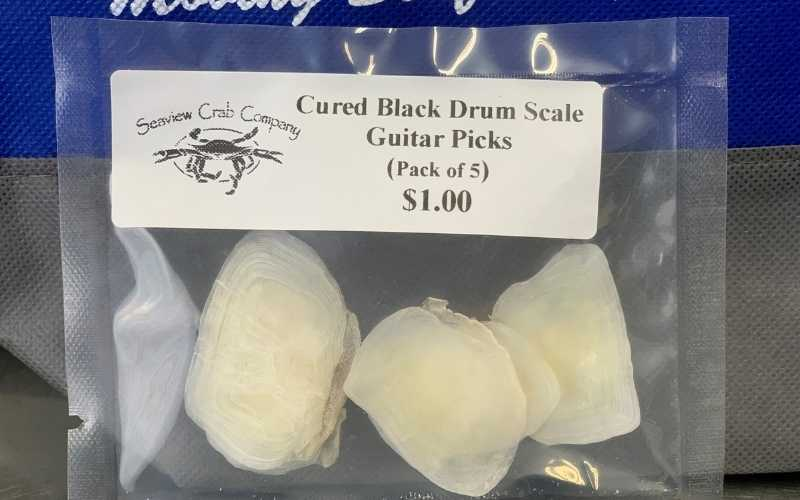 Cured Black Drum Scale